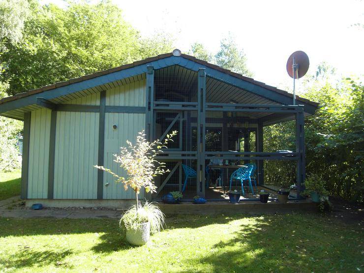 Ferien mit Mau & Wau - Ferienhaus in Waldhessen - Katzen und Hunde willkommen
