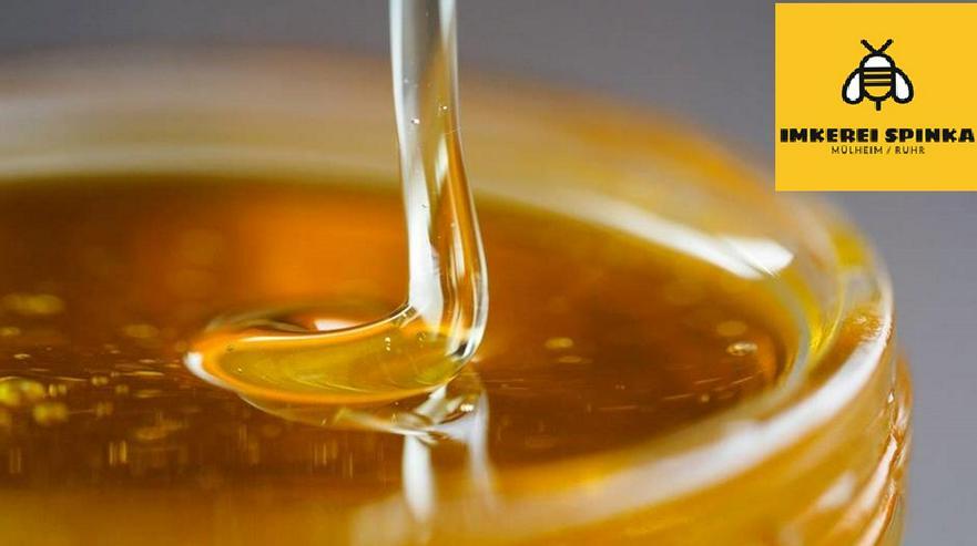 Honig - Blütenhonig direkt vom Imker
