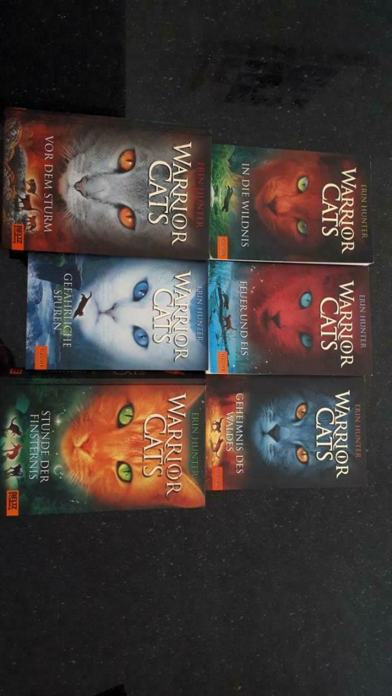 Warrior Cats Bücher - Kinder& Jugend - Bild 1