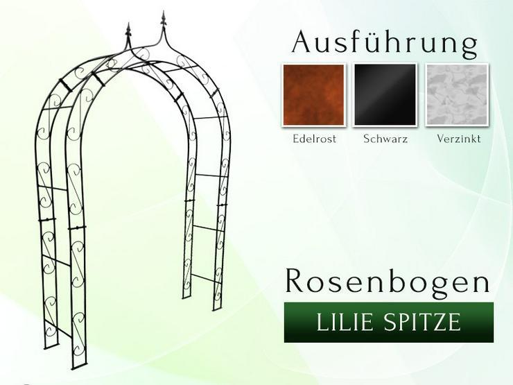 Metall- Eisen- Rosenbogen HOLLAND Breite 1,20 m - 2,60 m