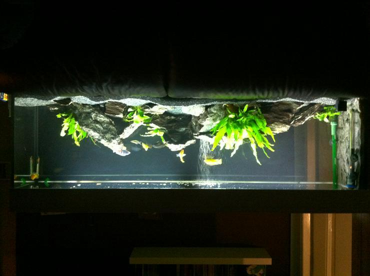 220L Aquarium Komplettset   Schrank + Lichtkasten Weiß   Aussenfilter   Kies/Steine   sämtl. Zubehör