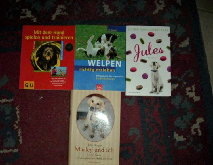9 HUNDE -Bücher, interessant und lehrreich