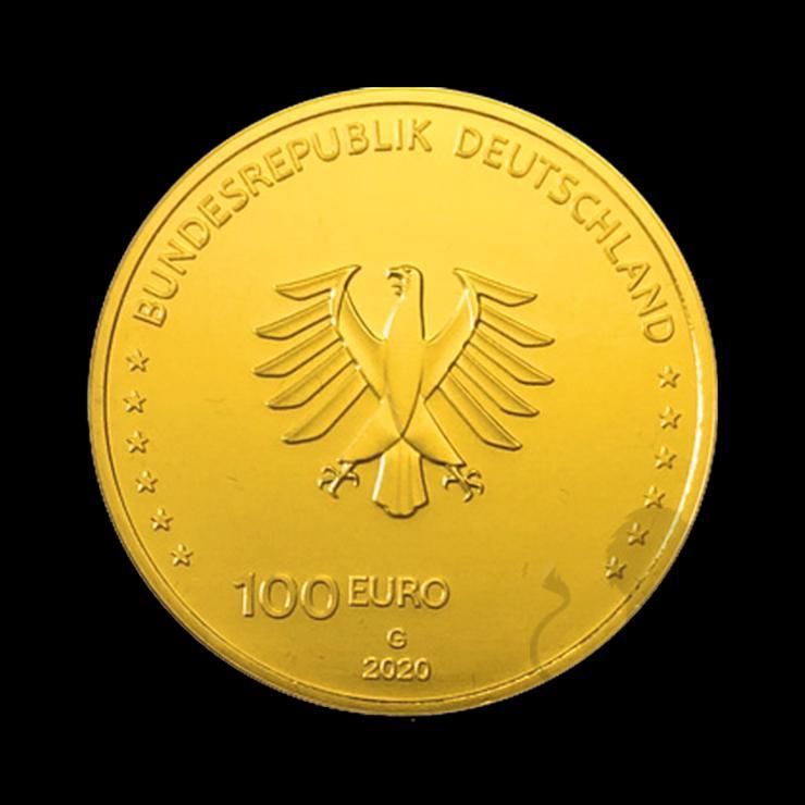 """Bild 5: BRD GOLDEURO  """"Säulen der Demokratie"""" 5 x 100 EURO EINIGKEIT 2020 SATZ"""