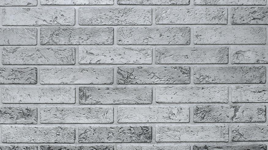 Wandverkleidung Kunststoff - verschiedene Ausführungen - ab 8,75€/Paket