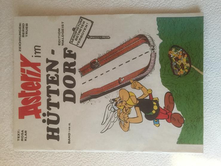 Asterix, Asterix im Hüttendorf