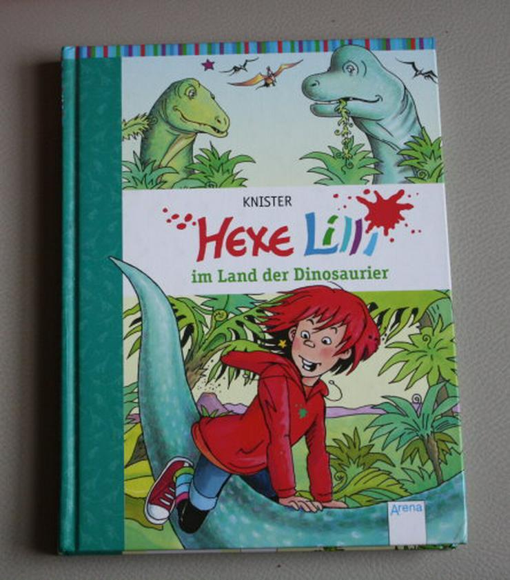 Hexe Lilli im Land der Dinosaurier Knister Band 14 Kinder Buch Abenteuer Fantasy