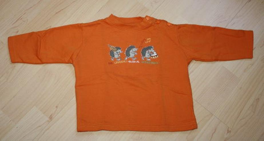 Baby Pullover Kinder Sweatshirt Langarm Pulli Mädchen Sweater Baumwolle Igel-Motiv orange Gr. 80 NEU