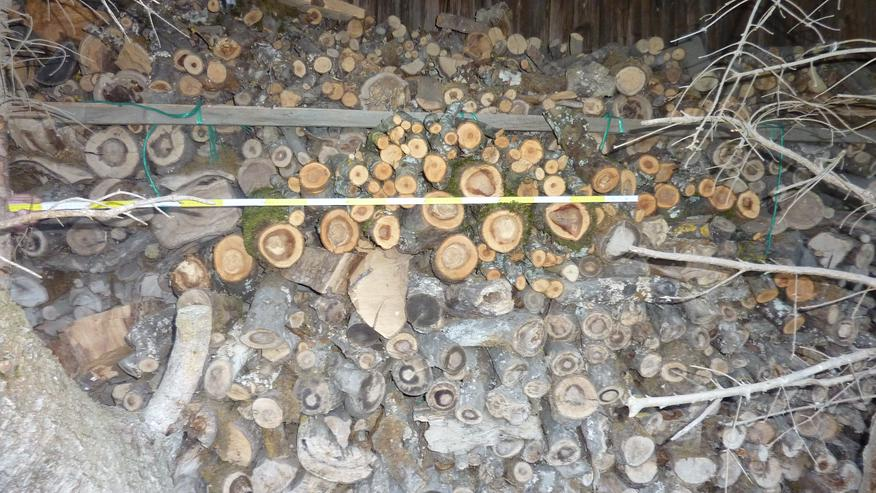 Brennholz, Ofenholz, Ofenfertig, Abholung ist tägl. möglich