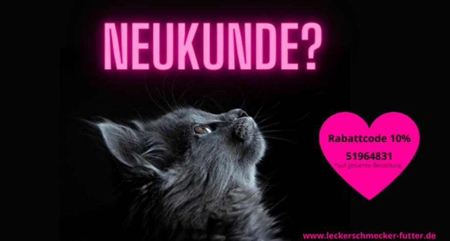 Katzenfutter Hundefutter Leckerli Gutschein - Tiere & Tierbedarf - Bild 1
