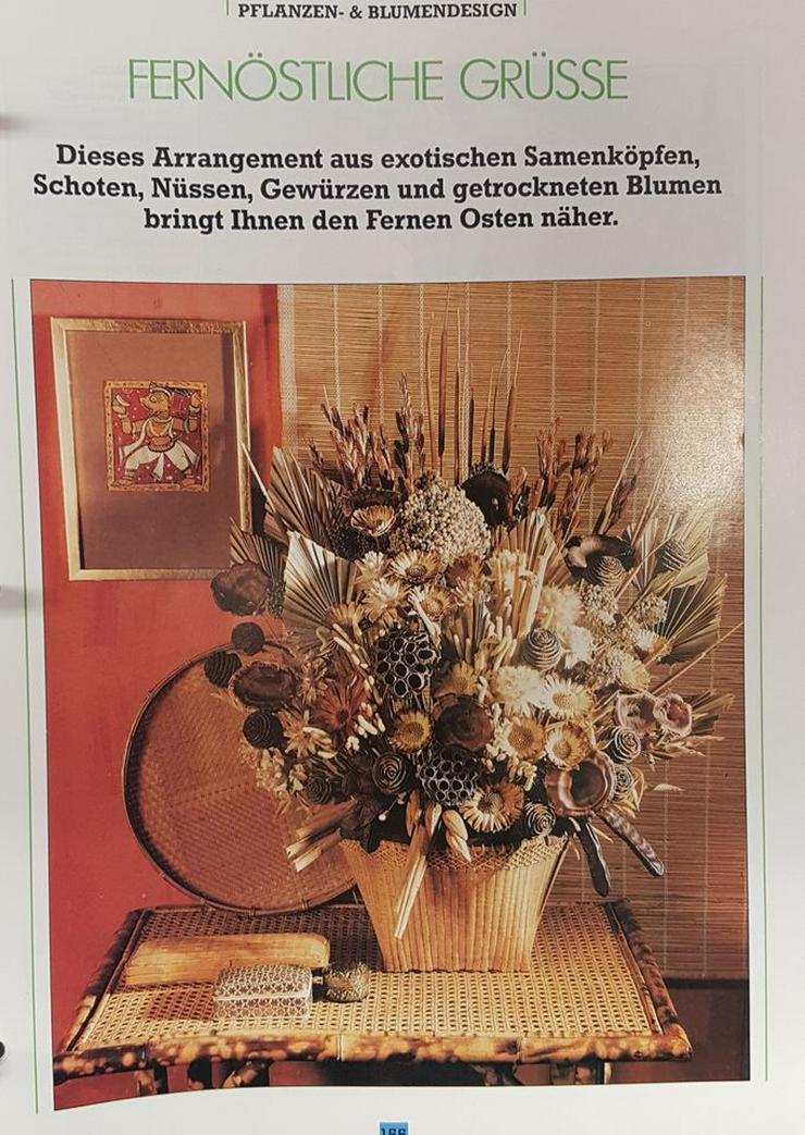 Bild 4: Ordner, Pflanzenpflege, Rund ums Haus, Raumgestalltung