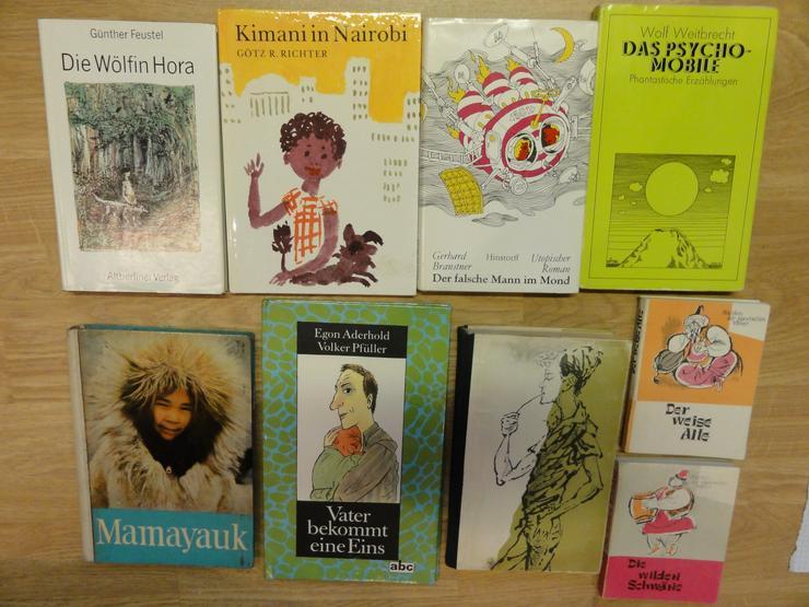 """Bild 4: Kinder-und Jugendbücher (u.a. """"Die Söhne der großen Bärin"""")"""
