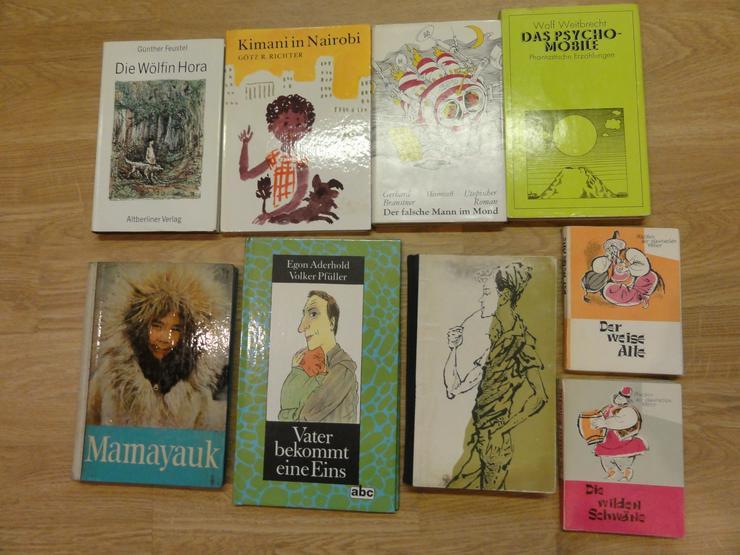 """Bild 2: Kinder-und Jugendbücher (u.a. """"Die Söhne der großen Bärin"""")"""