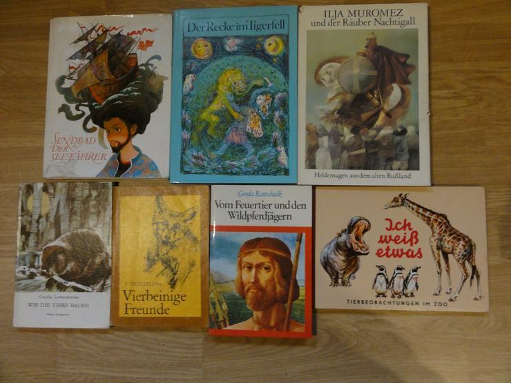 """Kinder-und Jugendbücher (u.a. """"Die Söhne der großen Bärin"""")"""