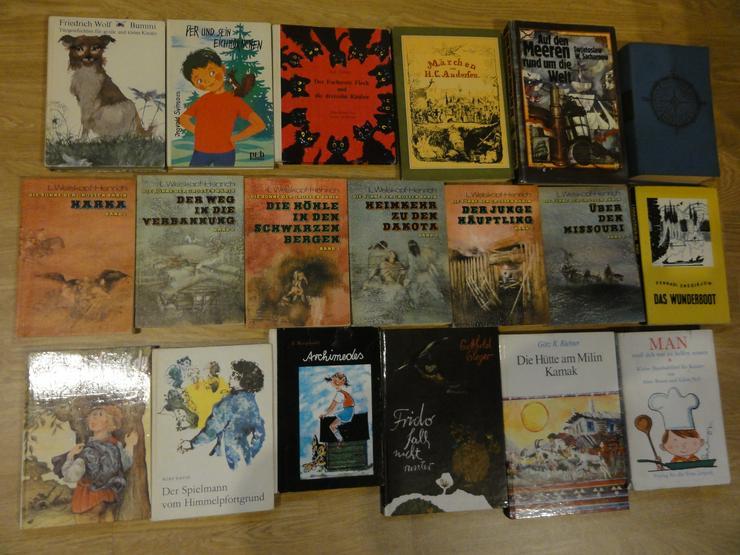 """Bild 6: Kinder-und Jugendbücher (u.a. """"Die Söhne der großen Bärin"""")"""