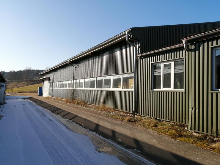 Halle als Lager- Produktionsfläche zu vermieten: