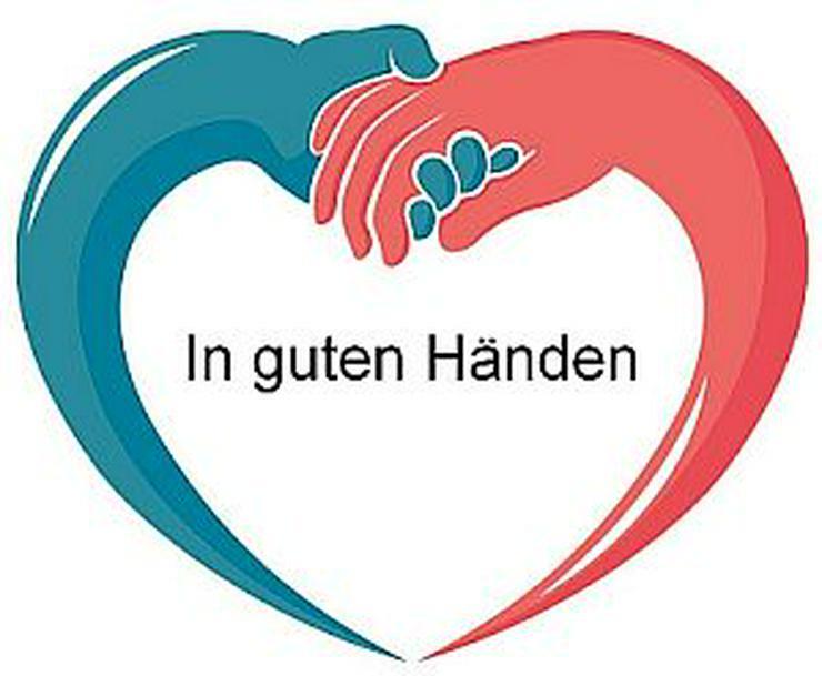 Raum Naumburg - Alltagshilfe, Haushaltshilfe, Seniorenhilfe