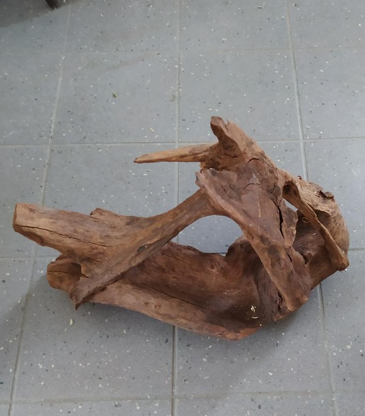 Amazonas Holz für Terrarium oder Aquarium