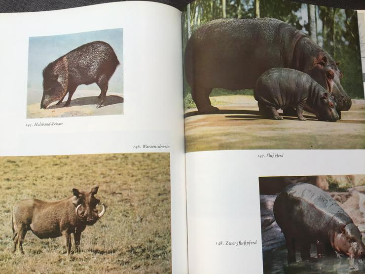 Bild 2: Knaurs Tierreich in Farben 5 Bände