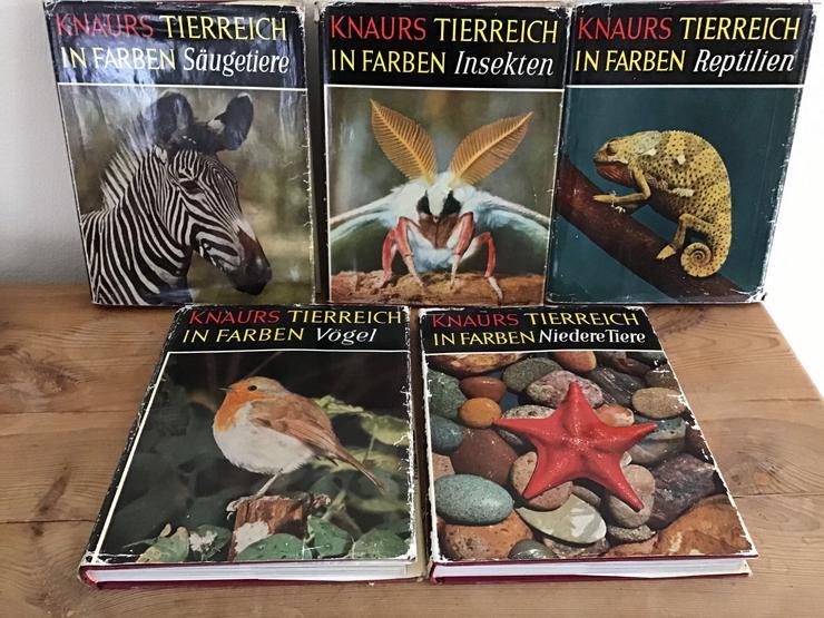 Knaurs Tierreich in Farben 5 Bände