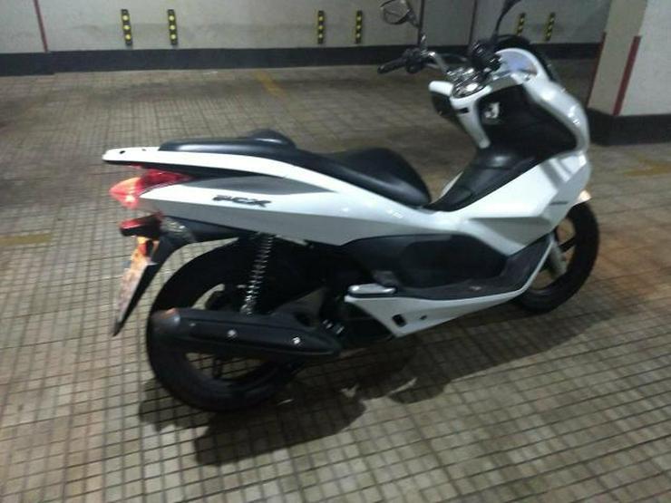 Honda PCX 125 Roller - Honda - Bild 1