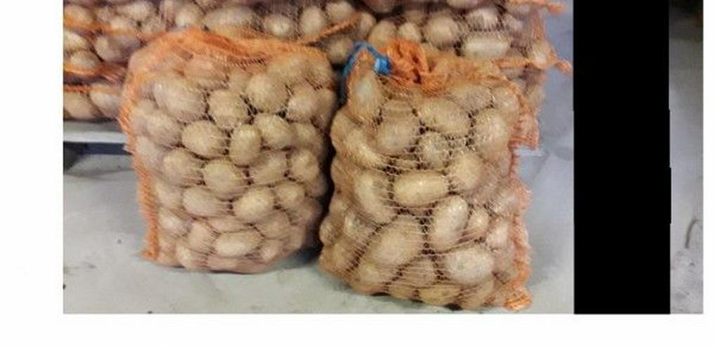 Kartoffeln  Sorte: Gala