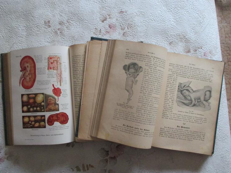 """Bild 5: """"Die Aerztin zu Hause"""", 2 antiquarische Bücher"""