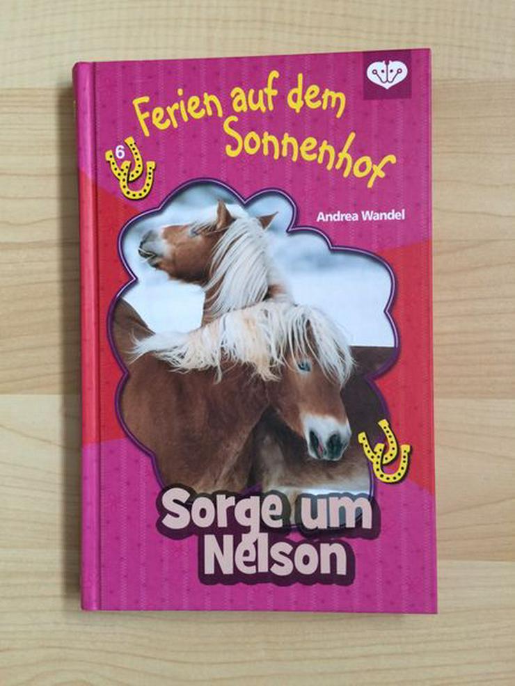 UNGELESEN Pferdebuch: Sorge um Nelson - Kinder& Jugend - Bild 1