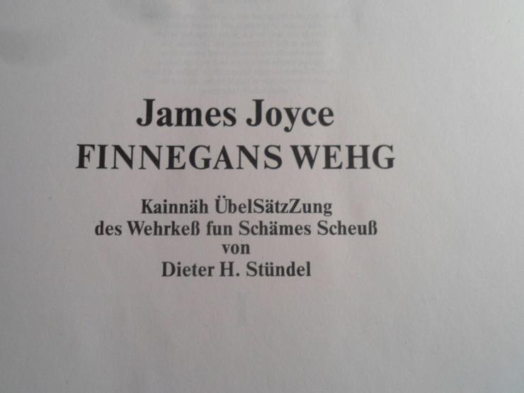 James Joyce Finnegans Wegh ungelesen - Klassische Dichtung - Bild 2