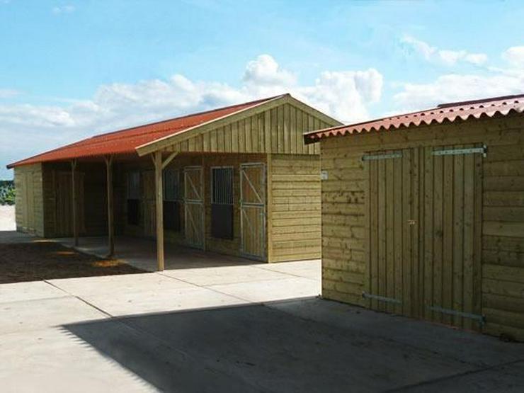 Bild 2: Pferdeboxen - Innenboxen, Aussenboxen