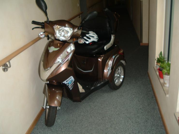 Bild 3: Moped & Motorroller