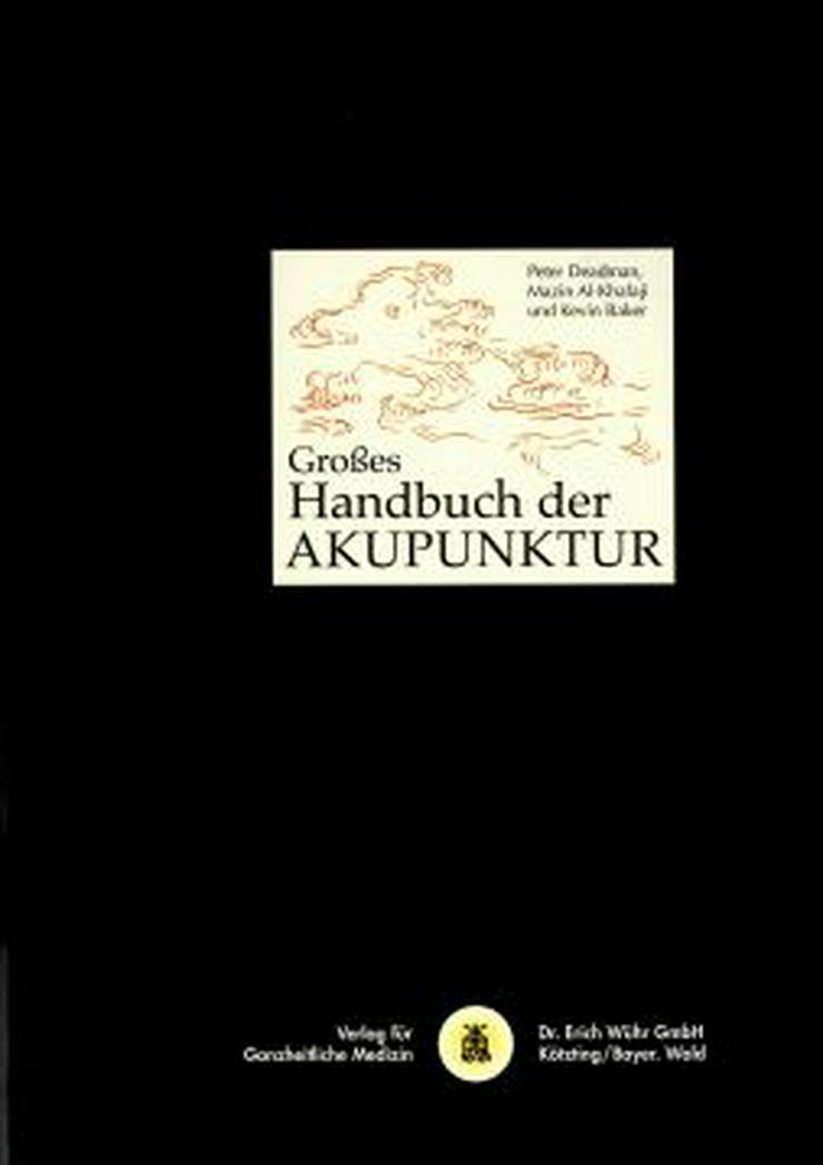 Großes Handbuch der Akupunktur
