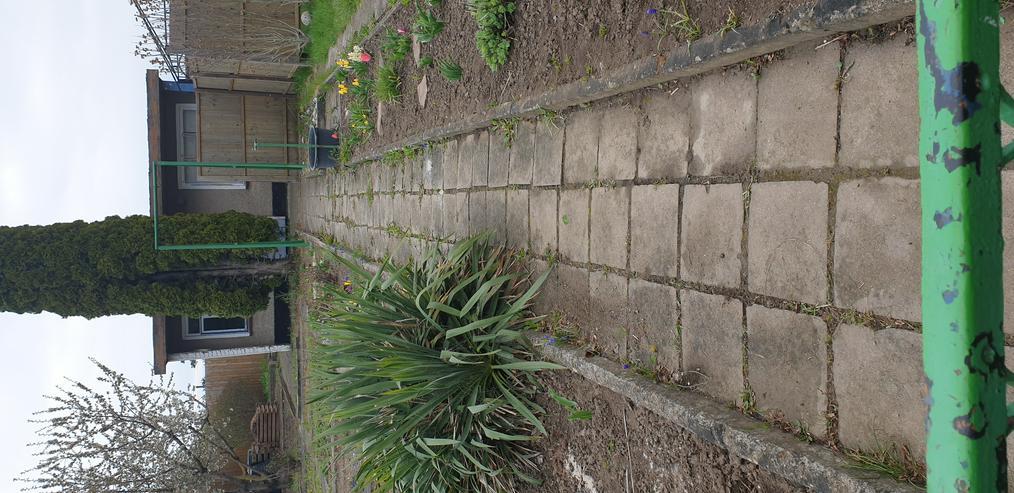 Bild 2: Pachtgarten
