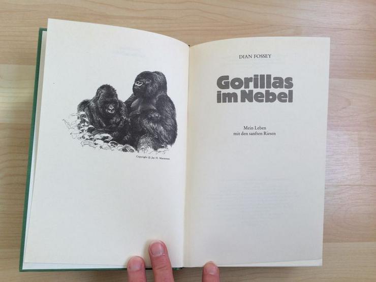 Bild 4: Buch Gorillas im Nebel v. Dian Fossey