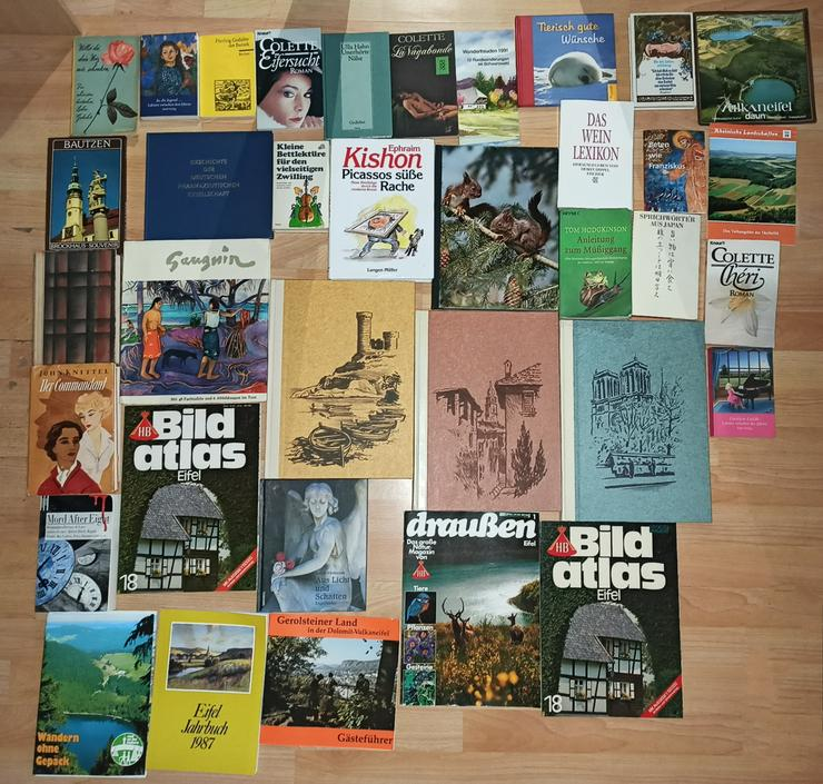 Bild 10: Bücher Konvolut Büchersammlung 277 Stück 1 Karton + 5 Säcke
