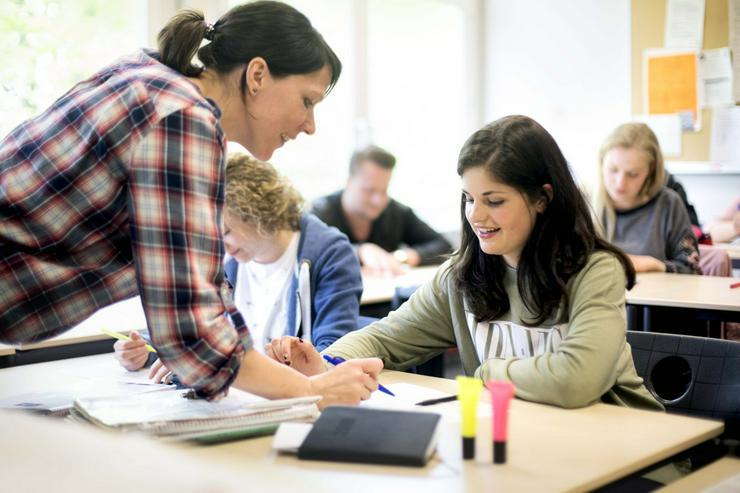 Lehrer/Dozent für die Bildungsgänge Heilerziehungspflege und Heilpädagogik (m/w/d) ID 8481