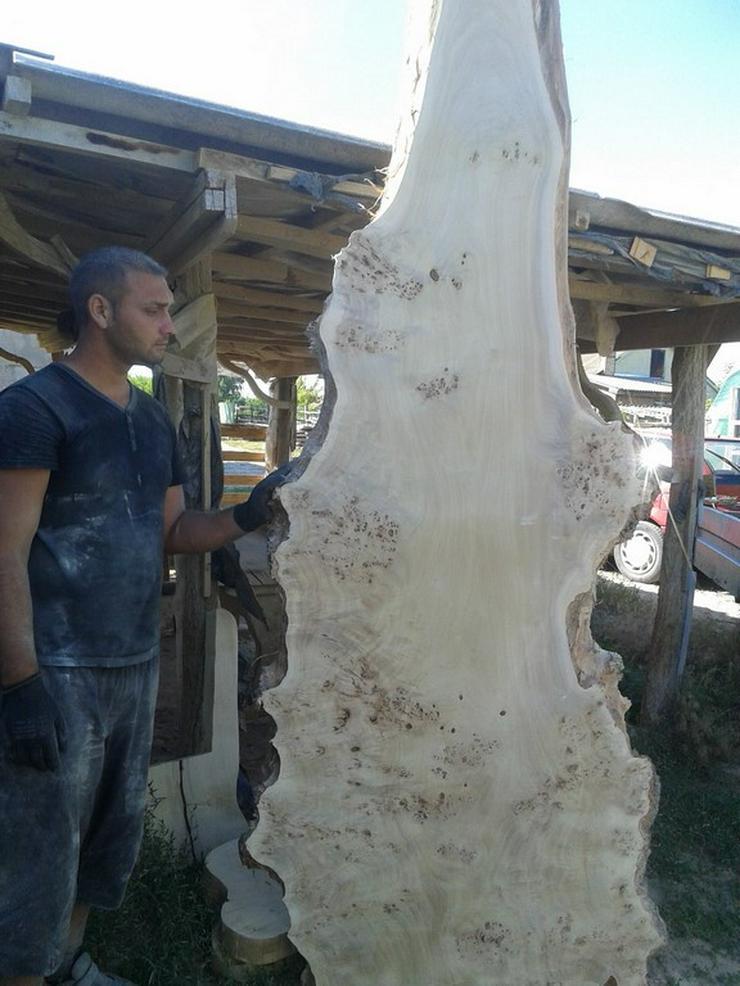 Bild 2: Getrocknetes Schnittholz aus Topolya - Pappelholz bestellbar!