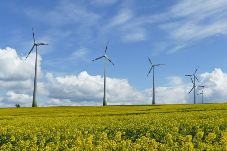 Freiflächen für Windkraftanlagen / Solar zur Pacht gesucht