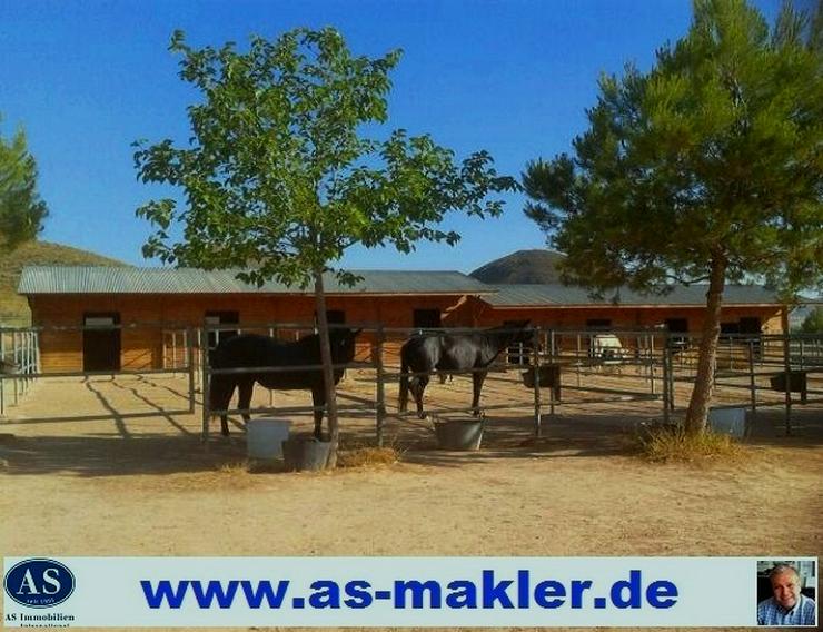 RESERVIERT und suche  Bauernhaus – Resthof DEUTSCHLANDWEIT!!!