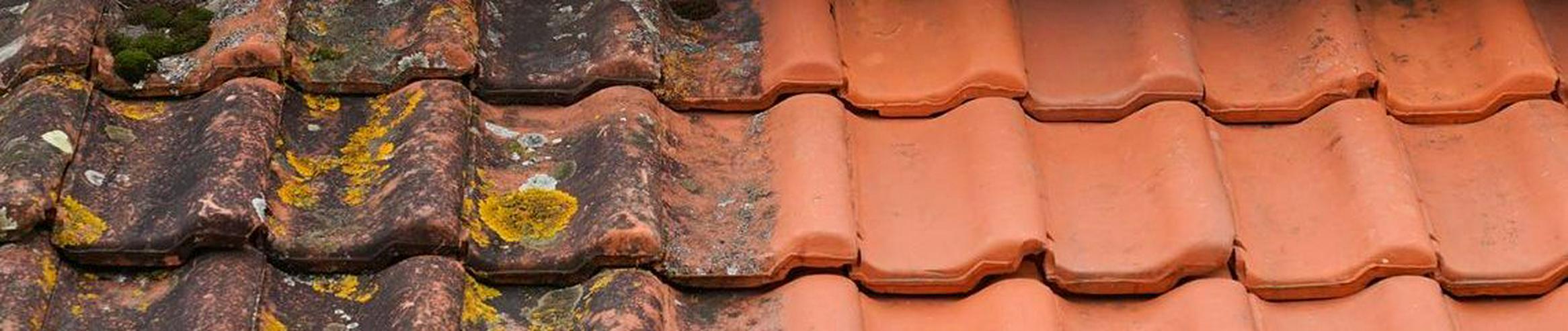 Bild 6: MOOSALARM - Profis für Dachreinigung - Dachinstandhaltung Bayern & Süddeutschland