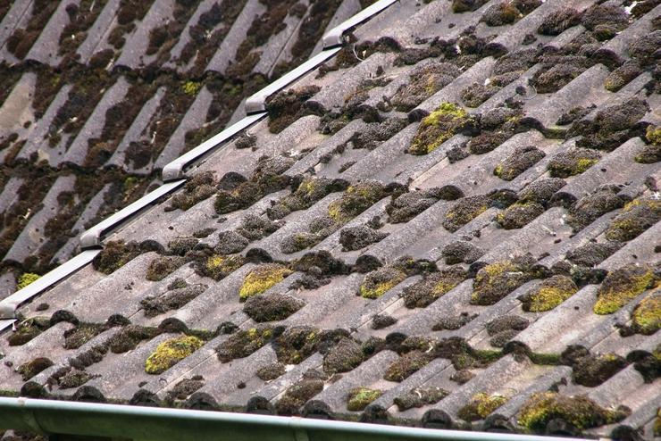 Bild 4: MOOSALARM - Profis für Dachreinigung - Dachinstandhaltung Bayern & Süddeutschland