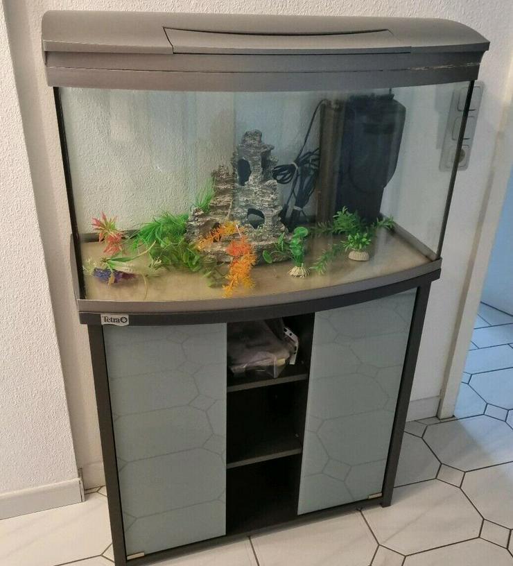 Aquarium 100L + Unterschrank und Starterset mit viel Zubehör