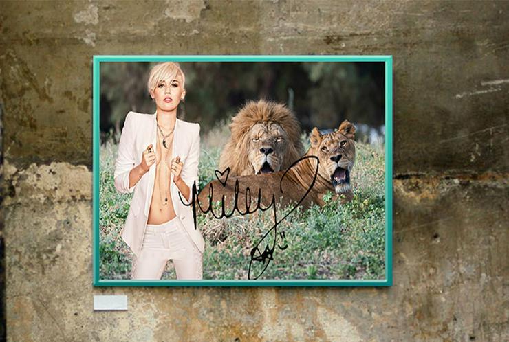 Miley Cyrus mit zwei Löwen. Bild. 45x30 cm. Souvenir. Geschenk. Andenken. Muss man haben! Sammlerstück. Rarität. BRANDNEU!