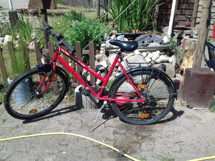 Mountainbike für mädchen - Mountainbikes & Trekkingräder - Bild 1