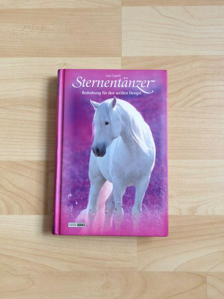 Pferde Buch Sternentänzer (6): Bedrohung für den weißen Hengst