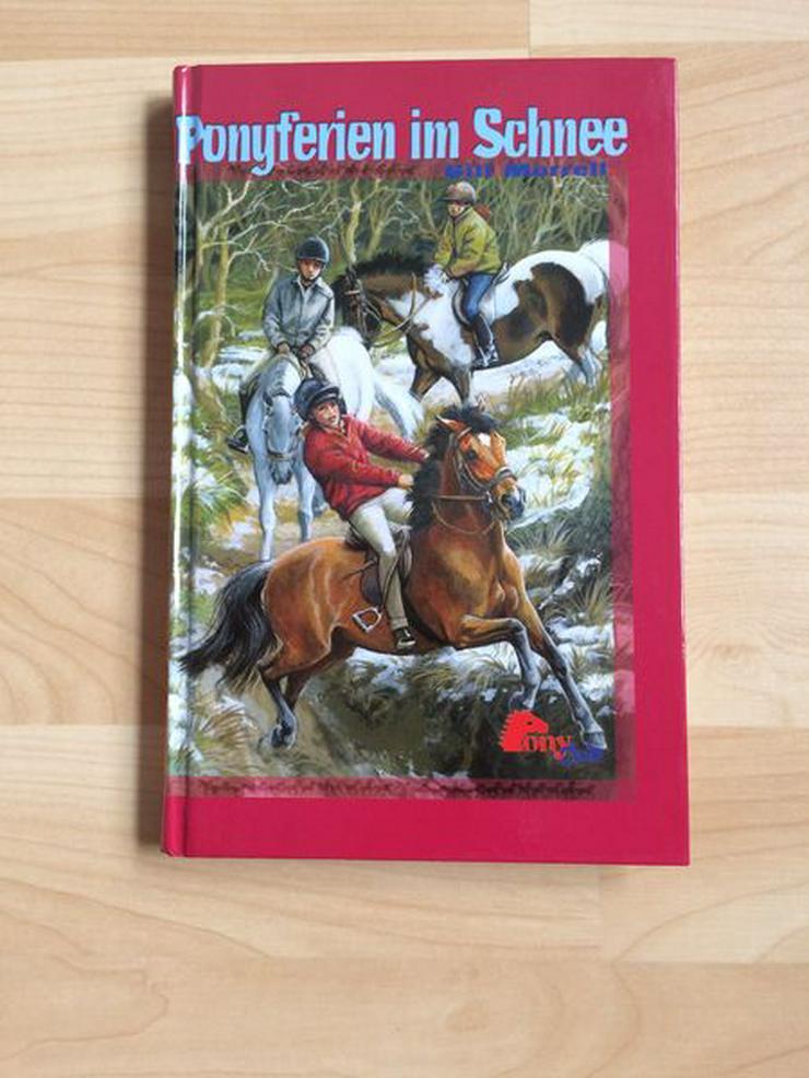 Pferde Buch Ponyferien im Schnee, ungelesen