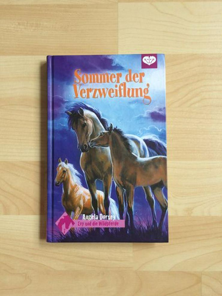 Pferde Buch Sommer der Verzweiflung