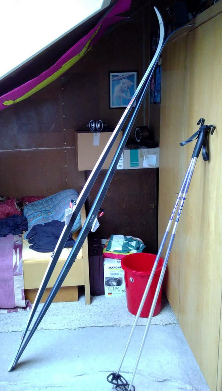 Bild 4: NONWAX Langlauf-Ski aus Haushaltsauflösung