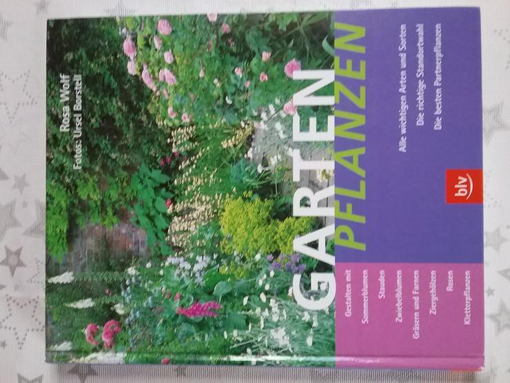 Gartenpflanzen - Garten, Heimwerken & Wohnen - Bild 1