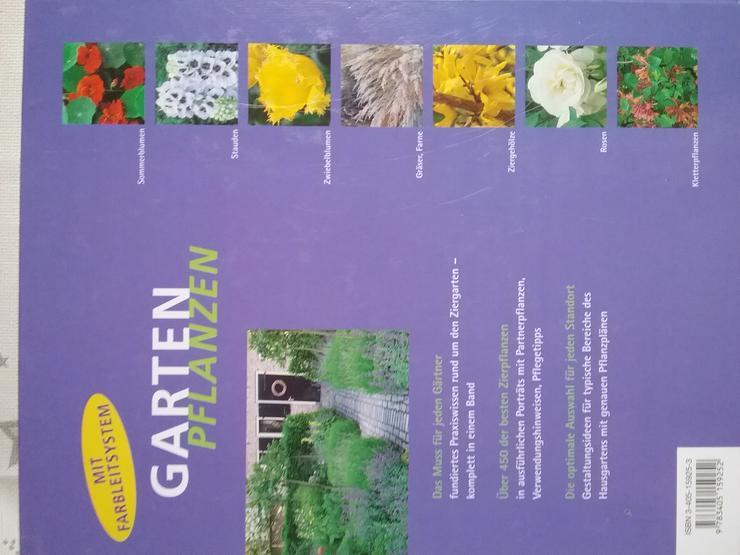 Bild 5: Gartenpflanzen