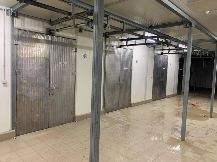 Bild 11: Schlachthof in Ungarn zu Verkaufen